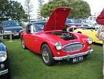 Austin Healey Car Club Day out-austin-healey-day-005.jpg